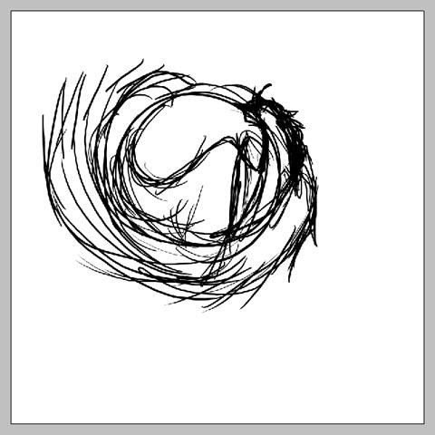 phoenix_02.jpg