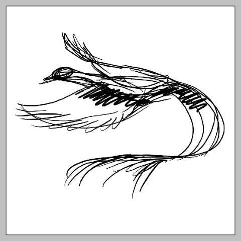 phoenix_03.jpg