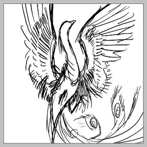phoenix_07.jpg