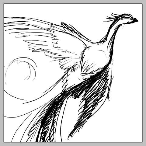 phoenix_08.jpg