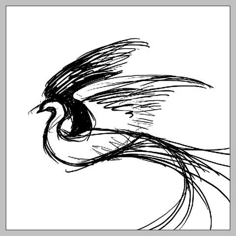 phoenix_09.jpg